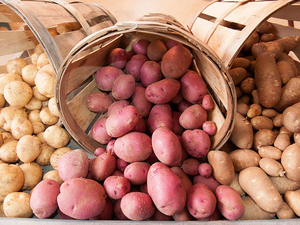A spilled truckload of potatoes — but not these spuds — blocked Interstate 77 in North Carolina on Friday.
