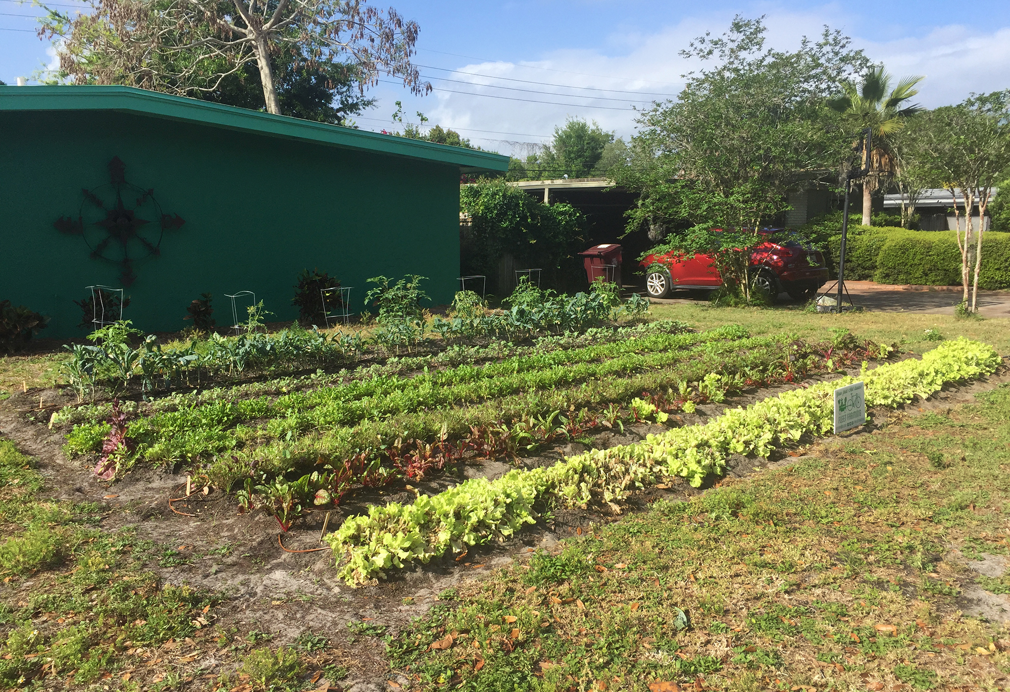 An All-Volunteer Squad Of Farmers Is Turning Florida Lawns Into Food