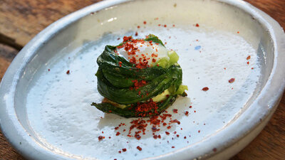 the new wildcrafted cuisine exploring the exotic gastronomy of local terroir