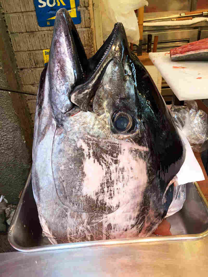 how to cook tuna fish head