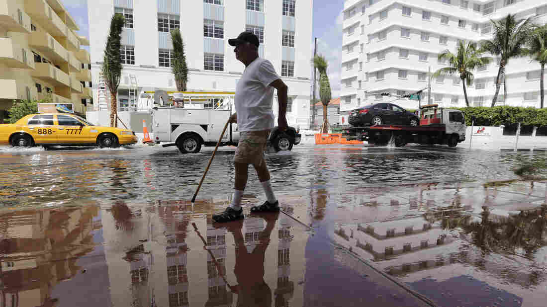 Louis Fernandez walks along a flooded Collins Avenue on Sept. 30, 2015, in Miami Beach, Fla. The city is tackling sea-level rise by rebuilding roads and installing new storm sewers and pumps.
