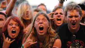 Screaming fans at an outdoor concert.