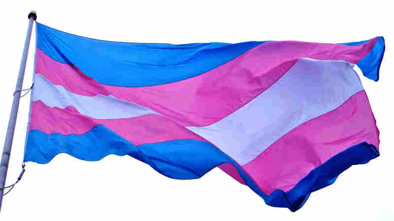 Seventeen states have legal protections to prevent discrimination against transgender people in areas like housing and employment.