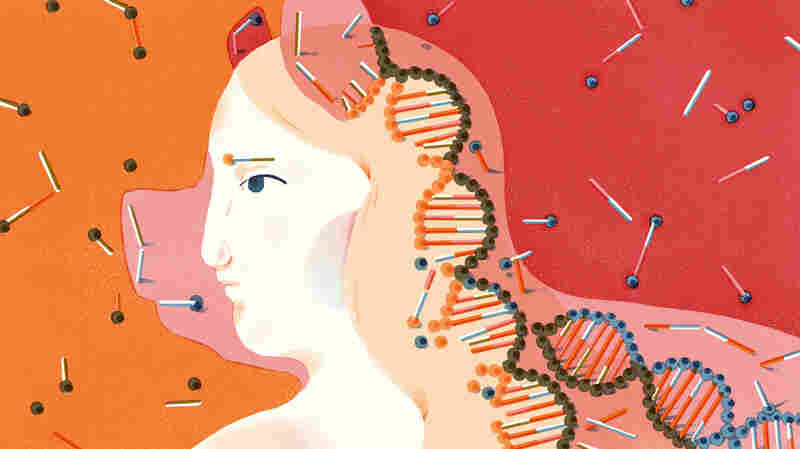 In Search For Cures, Scientists Create Embryos That Are Both Animal And Human