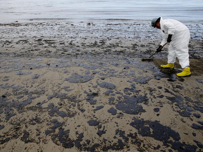 Image result for oil spill on beach