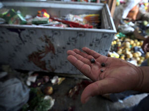 An Iraqi man displays steel pellets at the site of a suicide bombing Tuesday in the Shaab area of Baghdad.