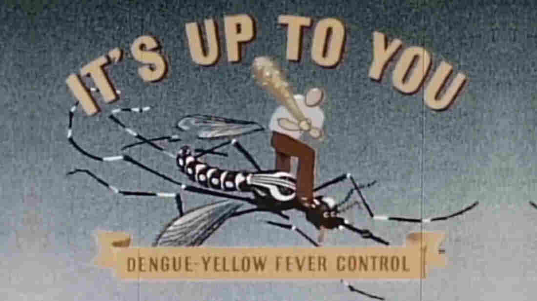 The title card from a 1945 government film about the campaign to control Aedes aegypti mosquitoes and prevent dengue and yellow fever.