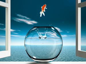 There are some questions whose answers seem unknowable, leaving us like the fish in the fish bowl, says Marcelo Gleiser.