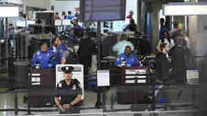 TSA's Head Of Security 'Removed' From Office, Says House Panel