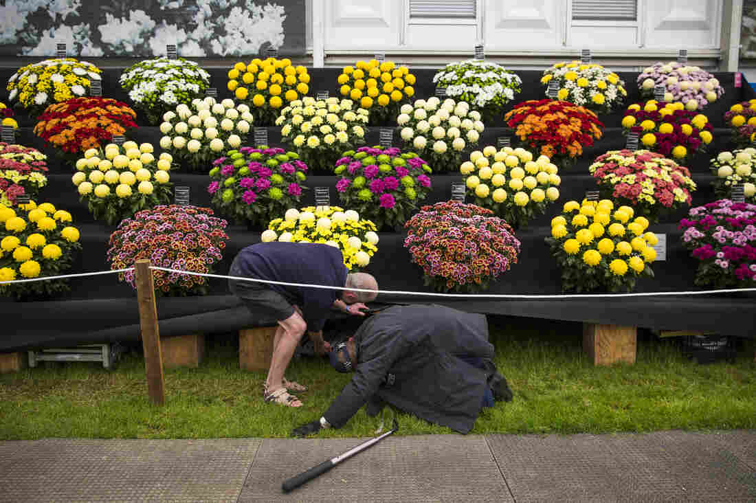 A police officer, with assistance, performs last-minute security checks at the flower show.