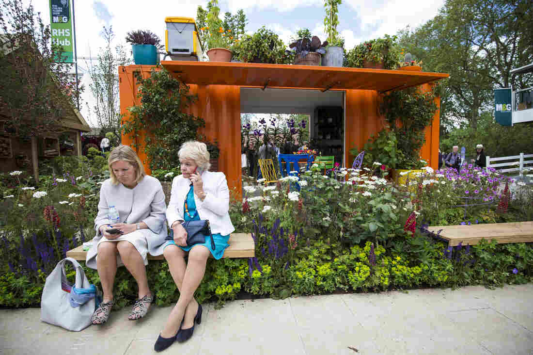 The garden designed by Ann-Marie Powell was created to raise awareness of the potential positive effects gardening can have on well-being.