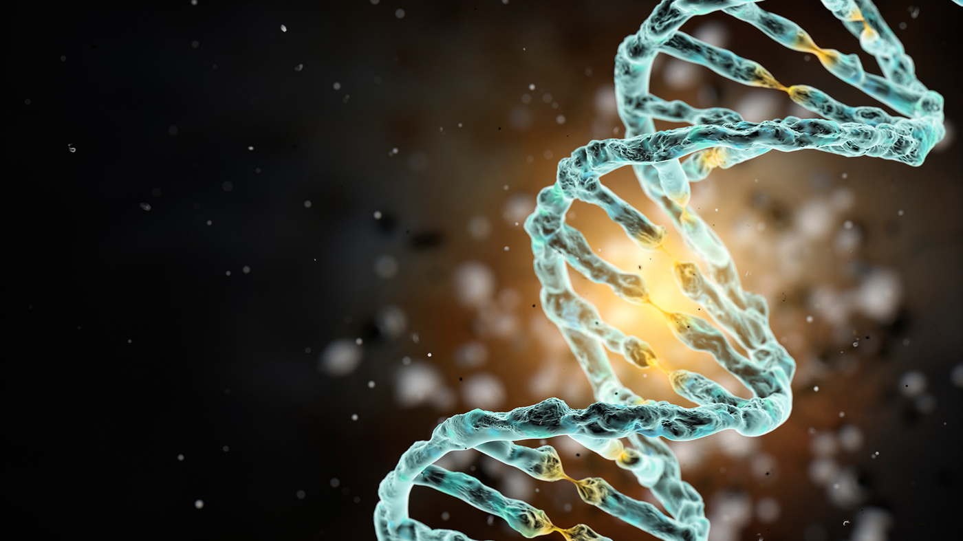 Scientists Want To Create A Synthetic Human Genome : Shots - Health News : NPR