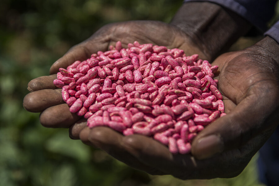 U.S. Lawmakers Scrutinize China's Bid To Buy Agrichemical Giant ...
