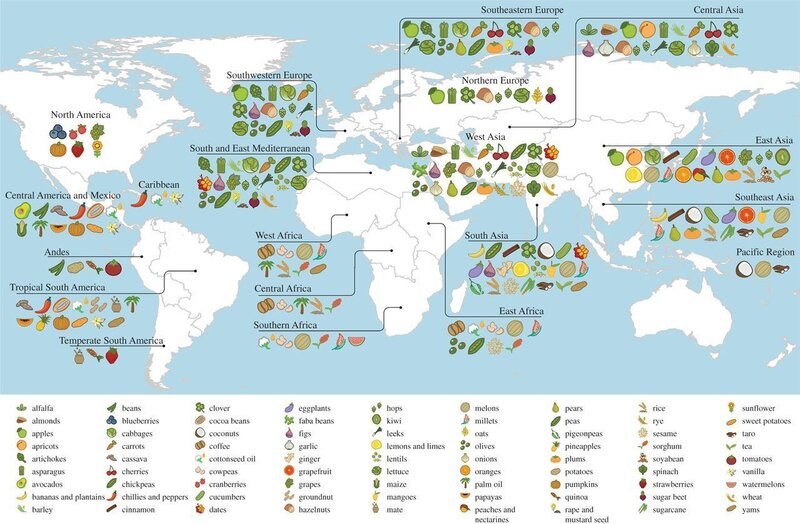 A Map Of Where Your Food Originated May Surprise You : The
