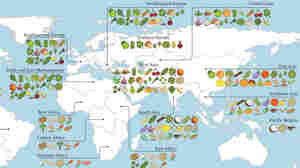 A Map Of Where Your Food Originated May Surprise You