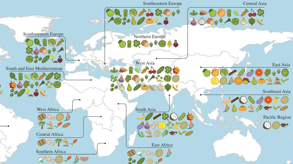 A Map Of Where Your Food Originated May Surprise You The Salt NPR - Us growing table for tomatoes via map