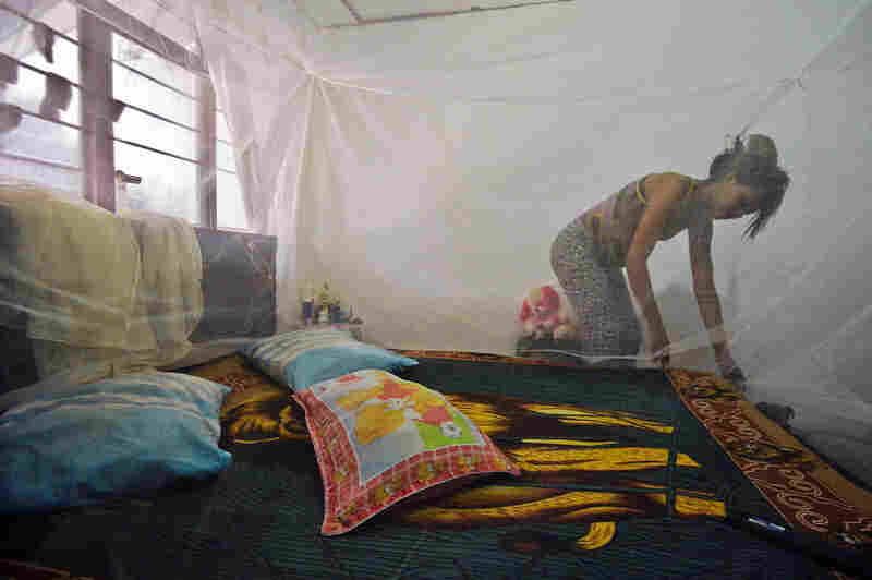 Seven months pregnant Maribel Gomez installs a mosquito net over her bed on February 17, 2016, in Cali, Colombia.