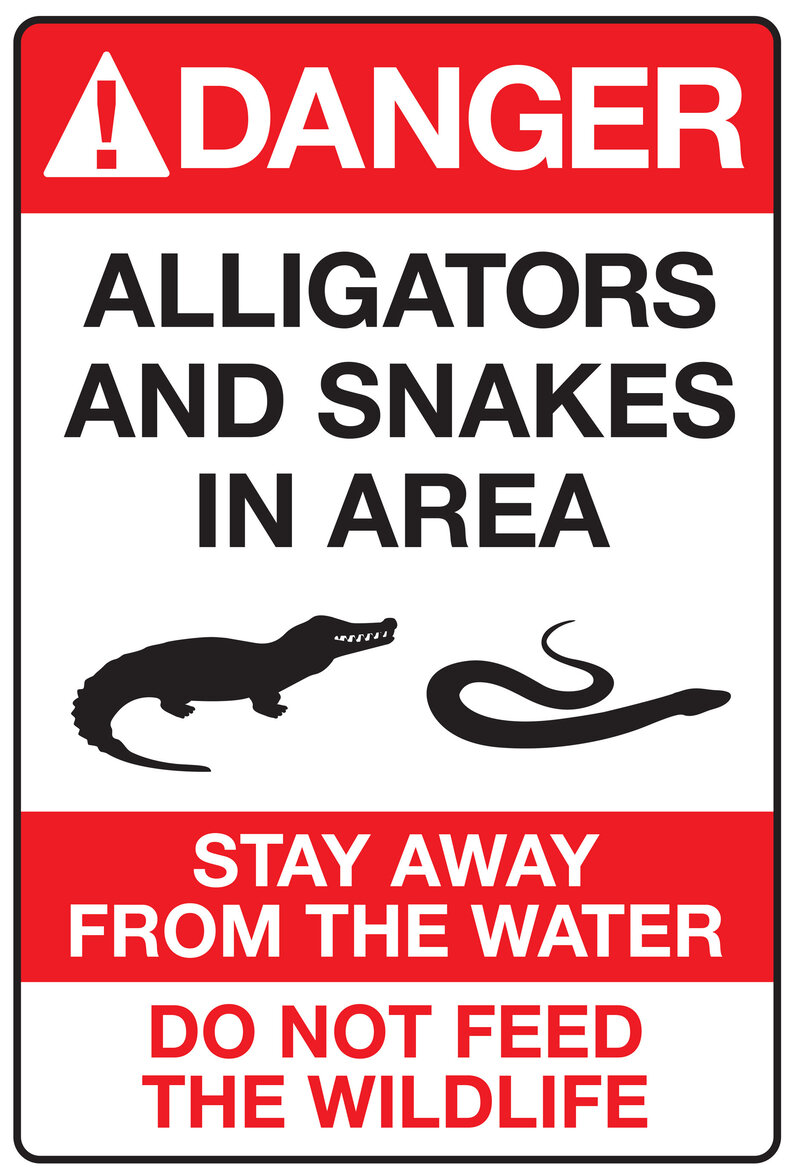 Fatal Alligator Attack At Disney Spurs New Warning Signs : The Two