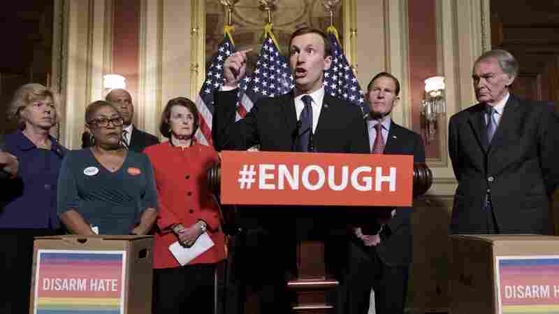 Will Senate Democrats' Talk-A-Thon Get Movement On Gun Legislation?
