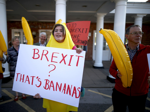 "Anti-Brexit supporters dressed as bananas protest outside a racecourse in York, England. ""It is absolutely crazy that the EU is telling us what shape our bananas have got to be,"" says Brexit's foremost cheerleader, Boris Johnson, the former mayor of London, invoking one of the oldest and most persistent tall tales about EU bureaucracy."
