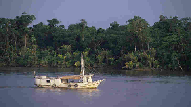 A small boat navigates through the narrows of the Amazon River delta near Belem, Brazil.