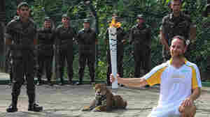 Jaguar Used In Olympic Torch Ceremony Escapes, Is Shot Dead