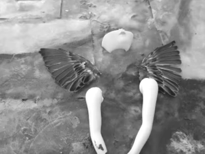 """A scene from Marissa Nadler's new video for """"Janie In Love."""""""