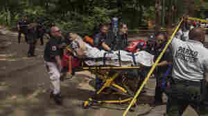 Central Park Tourist Injured When Explosive Material Goes Off