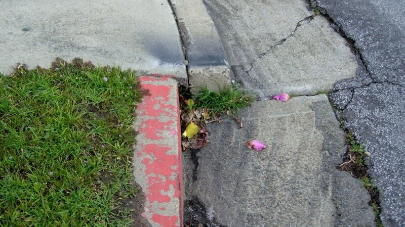 The curb in Hayward, shown in March 2006, has changed over the years. For decades it moved about 4 millimeters per year.