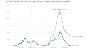 Zika Epidemic May Have Peaked But Will Threaten U.S. For Years