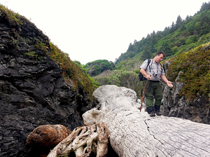 Michael Peterson, an archeologist at Redwood National Park in California, photographs the coastline annually to monitor erosion of archeological sites.