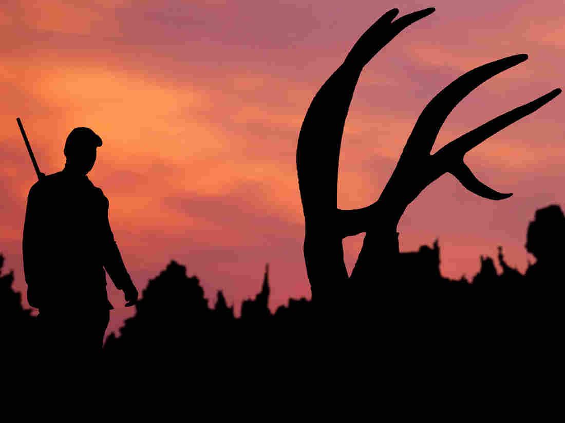 A hunter approaches an elk kill at twilight.