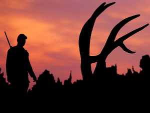 A hunter approaches an elk kill at twilight.
