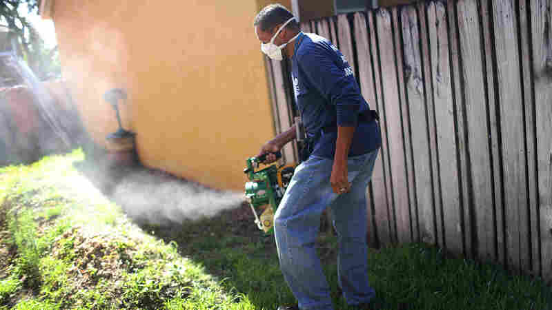 Larry Smart, a Miami-Dade County mosquito control inspector, uses a fogger to spray pesticide to kill mosquitoes in an effort to stop a possible Zika outbreak in Miami.