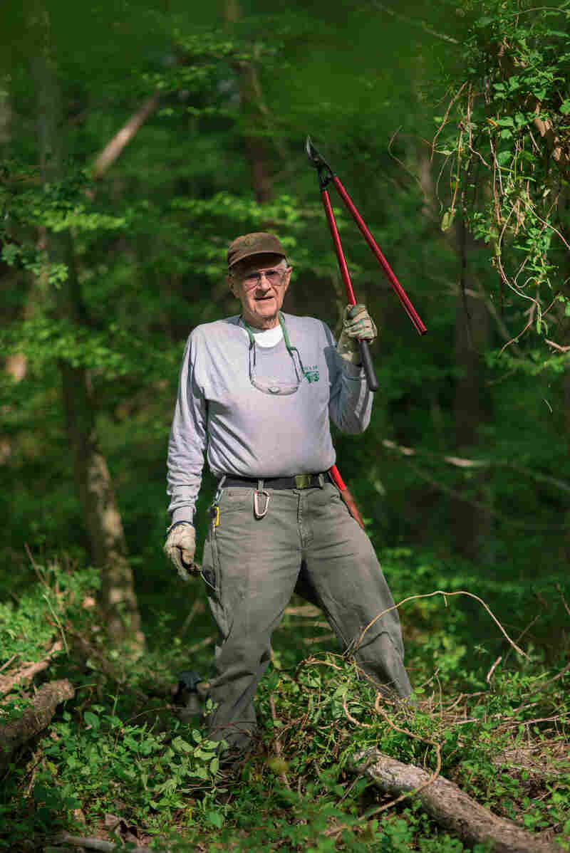 "Paul ""Doc"" Hadala, a volunteer at Great Smoky Mountains National Park, works to eliminate invasive plant species from a section of forest."