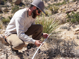James Heintz of the University of California-Riverside maps out plant life in Joshua Tree National Park for a yearly census to see how the ecosystem is changing.