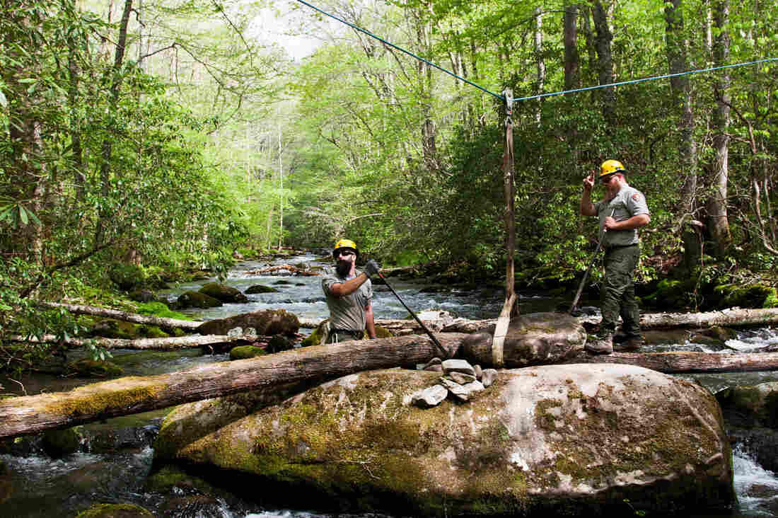 Brad Metler (left) and Mason Phillippi position a rock that will serve as an abutment for a small footbridge across the Oconaluftee River to an old cemetery in Great Smoky Mountains National Park. Both men work for the park's trail crew, which maintains more than 800-miles of trail in the park.
