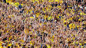 The Physics And Psychology Of 'The Wave' At Sporting Events