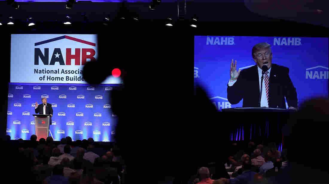 Newt Gingrich: Steve Bannon Hire