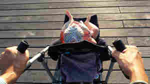 Falls From Strollers And Baby Carriers Can Cause Serious Injuries