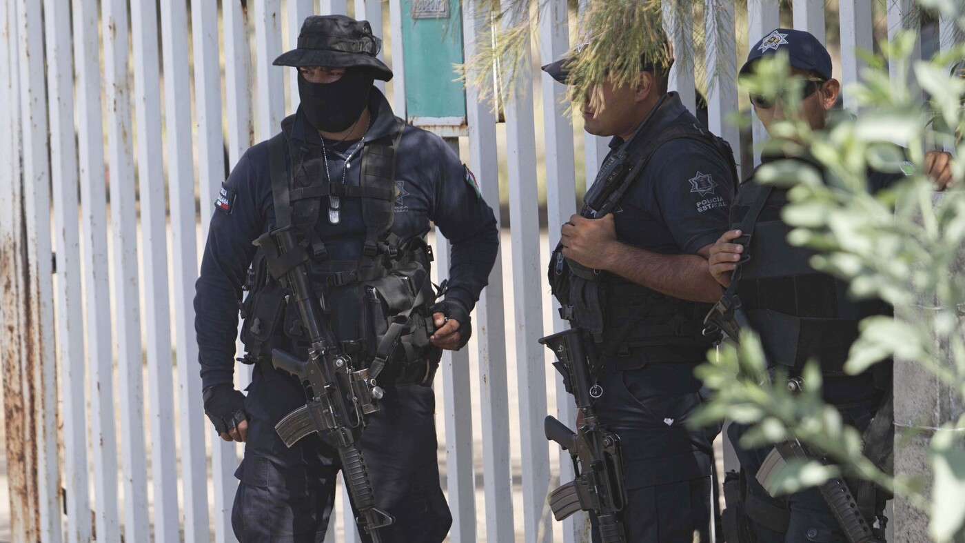 mexican police murdered   manipulated crime scene review finds    npr