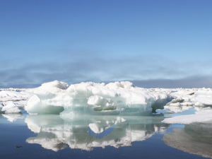 Sea ice melts off the beach of Barrow, Alaska, where Operation IceBridge is based for its summer 2016 campaign.