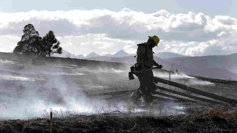 In Wildfires, Big Flames Attract Attention, But Watch Out For The Embers