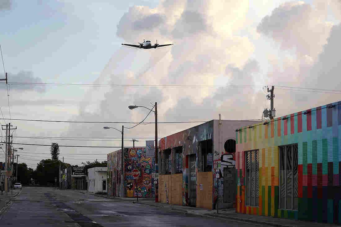 How Big, Really, Is The Zika Outbreak In Florida? : Shots - Health News : NPR - bonafeed
