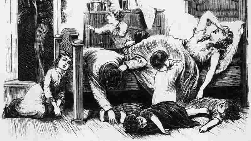 Yellow Fever Timeline: The History Of A Long Misunderstood Disease
