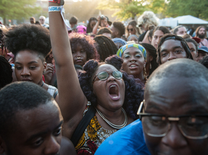 Fans at the Afropunk Festival Brooklyn, now in its 11th year.