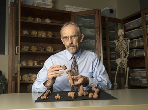 Professor John Kappelman with 3D printed replications of Lucy's bones.