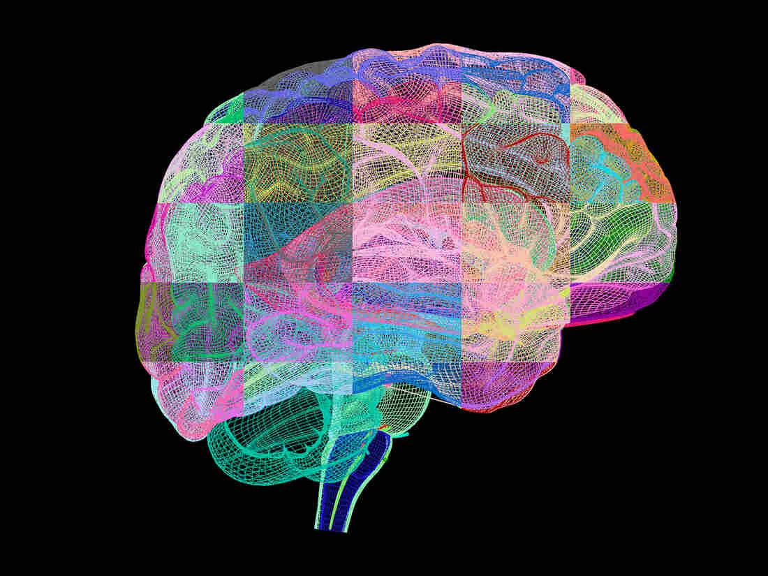 alzheimer 39 s drug shows promise against brain plaques shots health news npr. Black Bedroom Furniture Sets. Home Design Ideas
