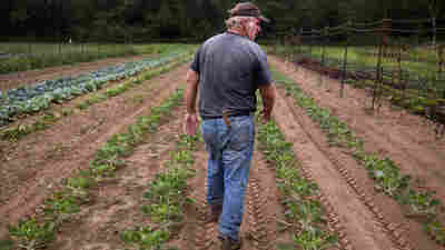 Northeast Farmers Grapple With Worst Drought In More Than A Decade