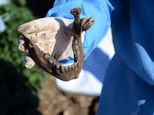 This image released by the the Mass Graves Directorate of the Kurdish Regional Government shows a human jaw bone exhumed from a mass grave containing Yazidis killed by Islamic State militants in the Sinjar region of northern Iraq in 2015.